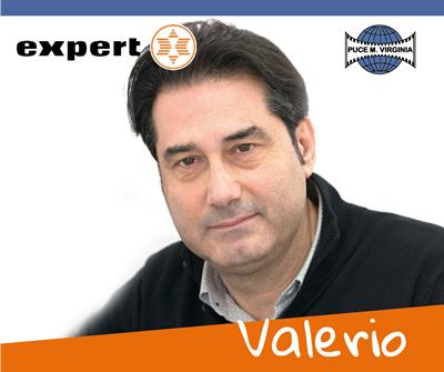 Elettrodomestici_Puce_M_Virginia_Team_Valerio